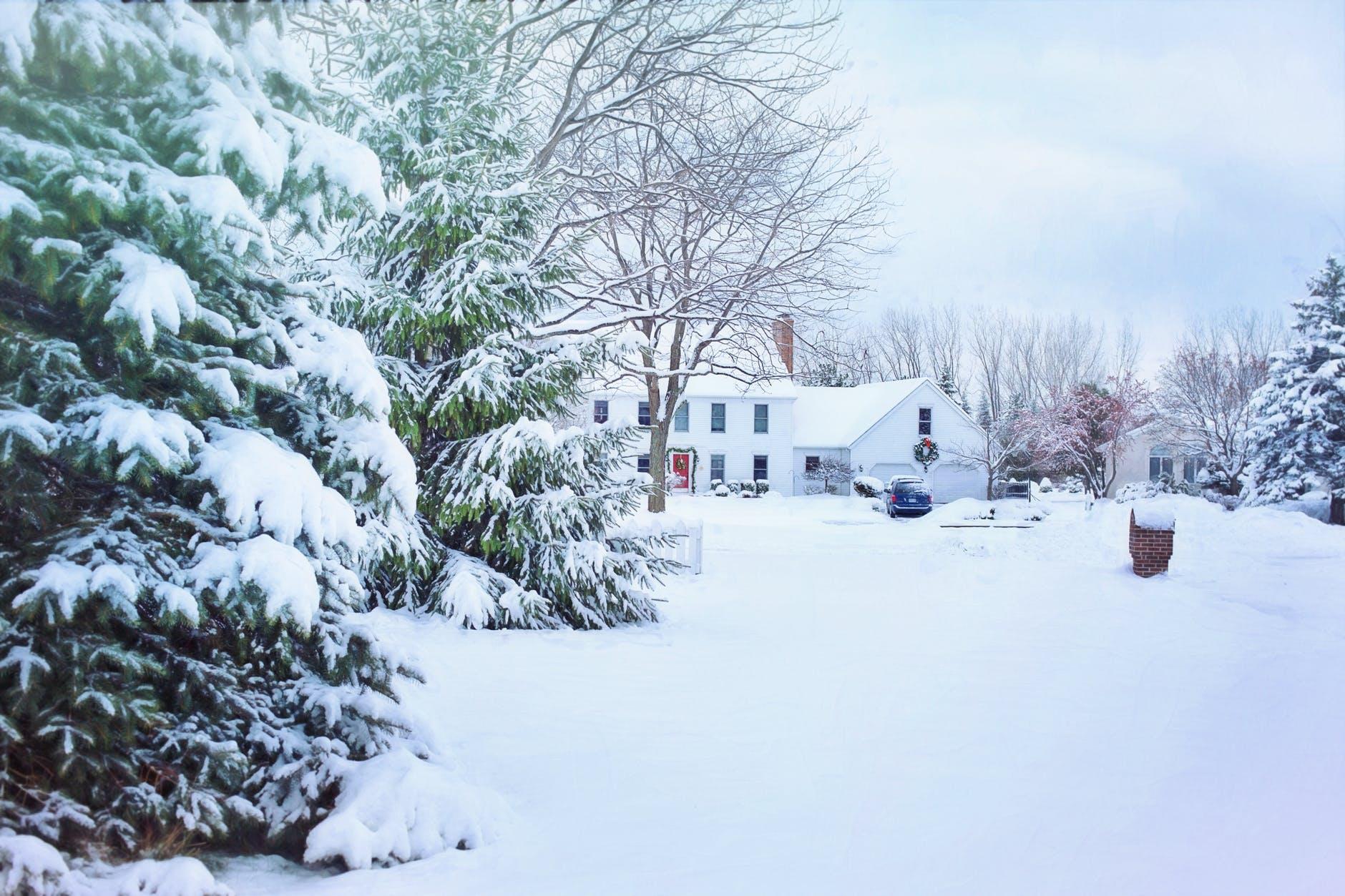 christmas christmas house cold fir
